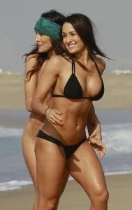 Nikki Bella sexy wet bikini