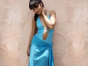 Vanessa Hudgens in sexy dress