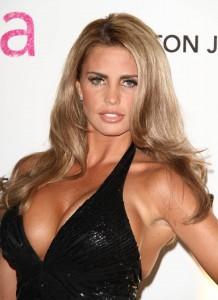 Katie Price sexy bra