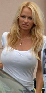 Pamela Anderson wears a see through top in Malibu